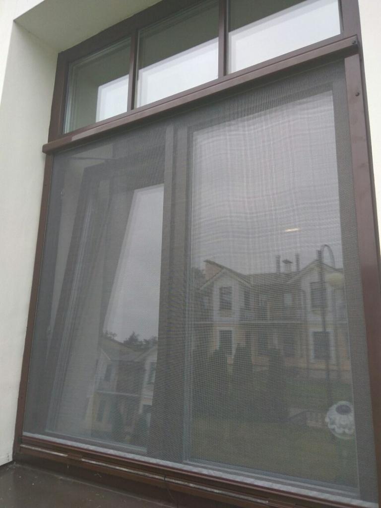 Рулонная москитная сетка на деревянном окне